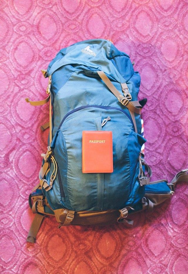 backpack-3663